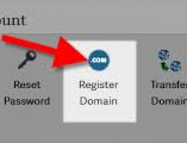 How to Register a New Domain Name