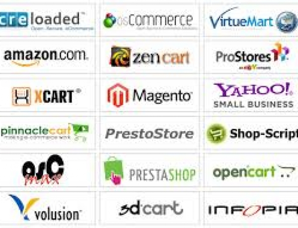 What Ecommerce Software Has to Offer