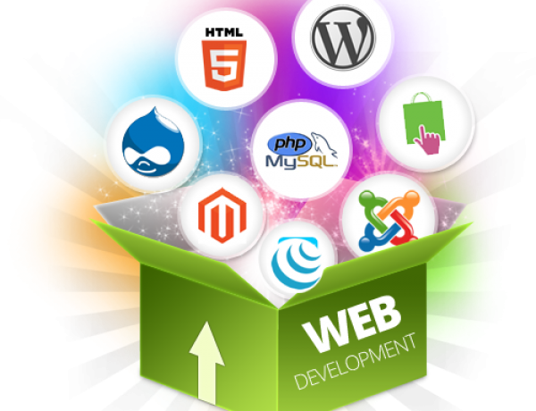 4 Steps To Success In Web Development