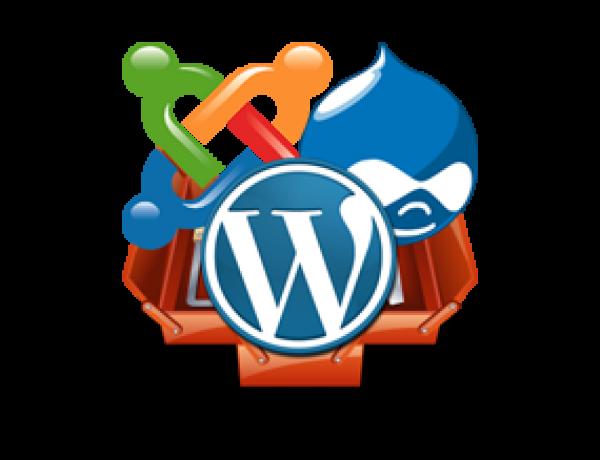 Web Design Using a CMS