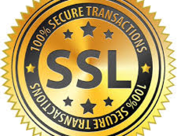Safe and Secure Online Payments with SSL Certificates