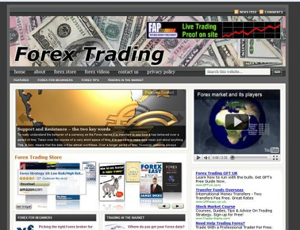 Can You Make Money With A Turnkey Business Website?