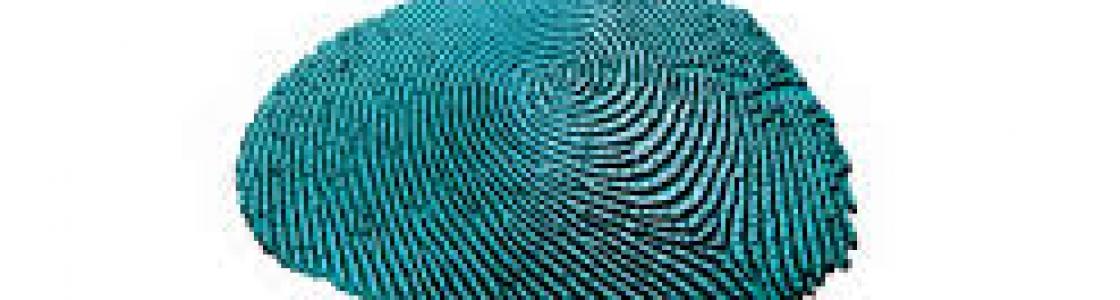 Qualcomm's new fingerprint sensor uses ultrasonic waves, could be built into screens