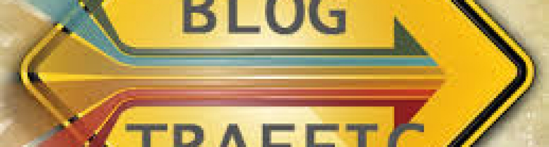 You Need Traffic For Your Blog, Here's How To See It.